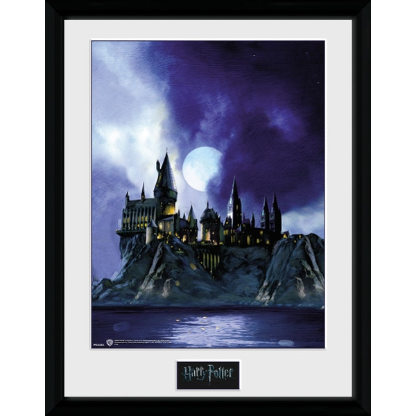 Harry Potter Hogwarts Painted Collector Print (30 x 40cm)