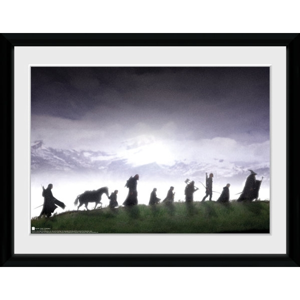 Lord of the Rings Fellowship 50cm x 100cm Collector Print