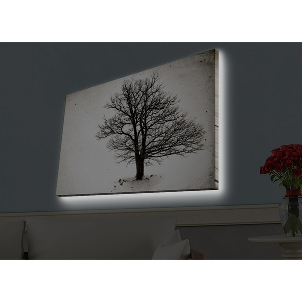 4570HDACT-056 Multicolor Decorative Led Lighted Canvas Painting