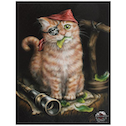 Small Pirate Kitten Canvas Picture by Linda Jones