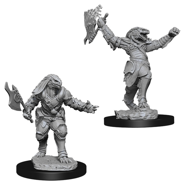 Dungeons & Dragons Nolzur's Marvelous Unpainted Miniatures (W11) Female Dragonborn Fighter