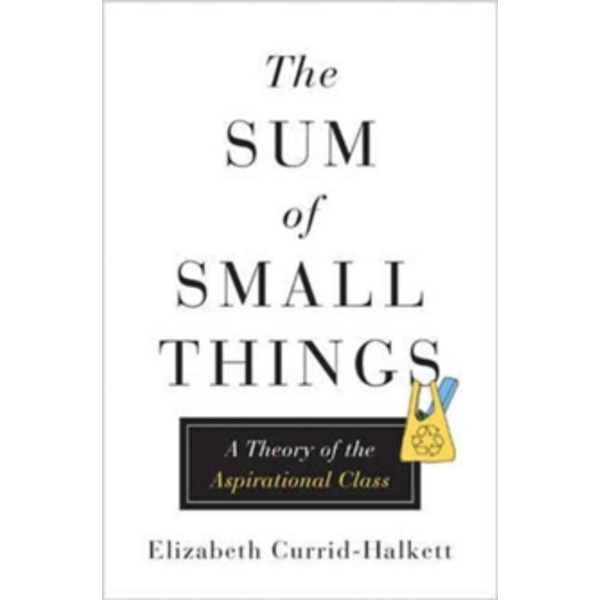The Sum of Small Things : A Theory of the Aspirational Class