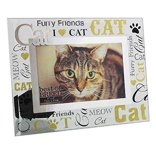 "6"" x 4"" - Best of Breed Glass Cat Photo Frame"