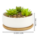 Ceramic Planter & Bamboo Base | M&W Round - Image 3