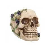 Purple Rose from Beyond Skull