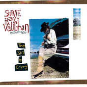 Stevie Ray Vaughan And Double Trouble - The Sky Is Crying Vinyl