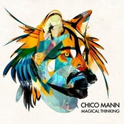 Chico Mann - Magical Thinking Vinyl