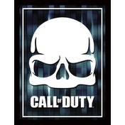 Call of Duty - Fragmented Skull Framed 30 x 40cm Print