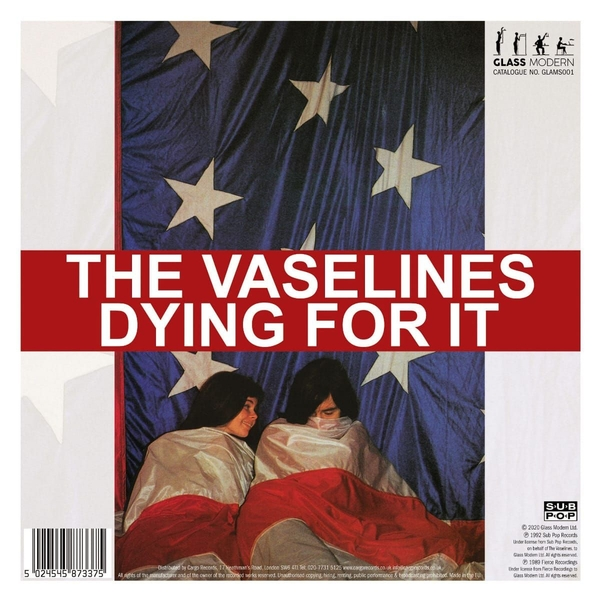 The Vaselines, The Pooh Sticks – Dying For It Vinyl