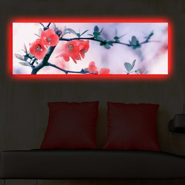 3090DACT-48 Multicolor Decorative Led Lighted Canvas Painting
