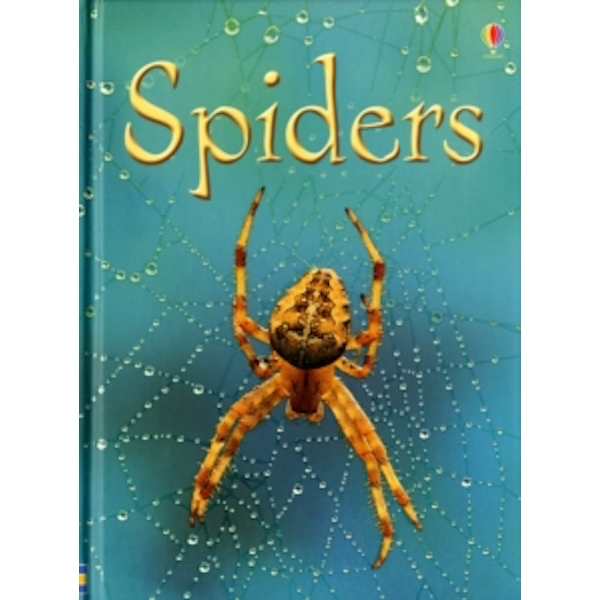 Spiders by Rebecca Gilpin (Hardback, 2007)