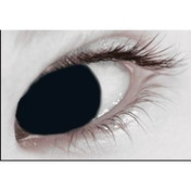 Mini Sclera Black 1 Month Coloured Contact Lenses (MesmerEyez)