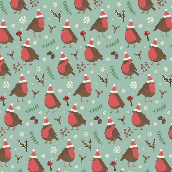 Sass & Belle Christmas Robin Wrapping Paper