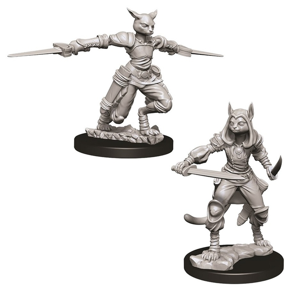 D&D Nolzur's Marvelous Unpainted Miniatures (W9) Female Tabaxi Rogue