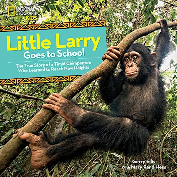 Little Larry Goes to School  Hardback 2019