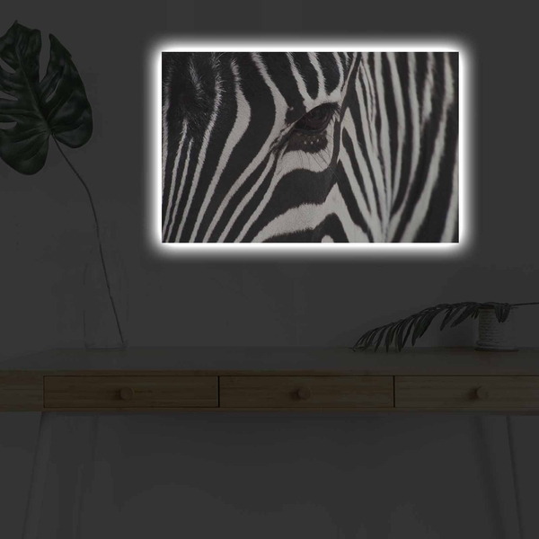 4570DHDACT-035 Multicolor Decorative Led Lighted Canvas Painting
