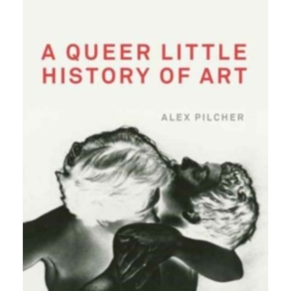 A Queer Little History of Art by Alex Pilcher (Paperback, 2017)