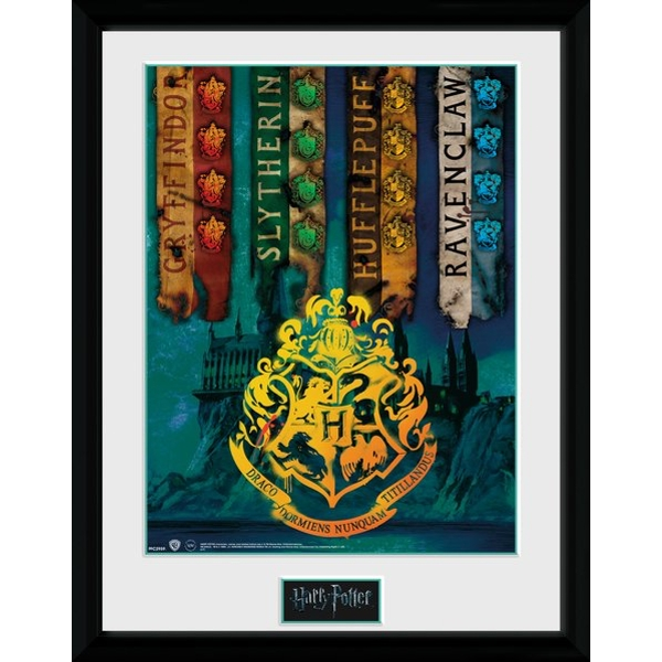 Harry Potter House Flags Framed Collector Print