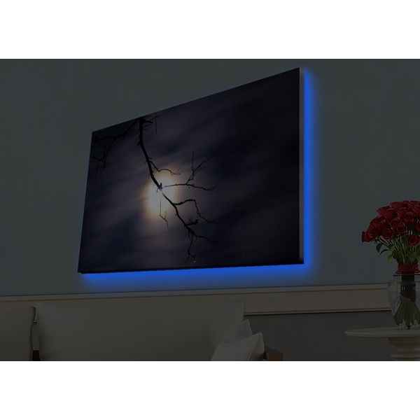 4570HDACT-019 Multicolor Decorative Led Lighted Canvas Painting