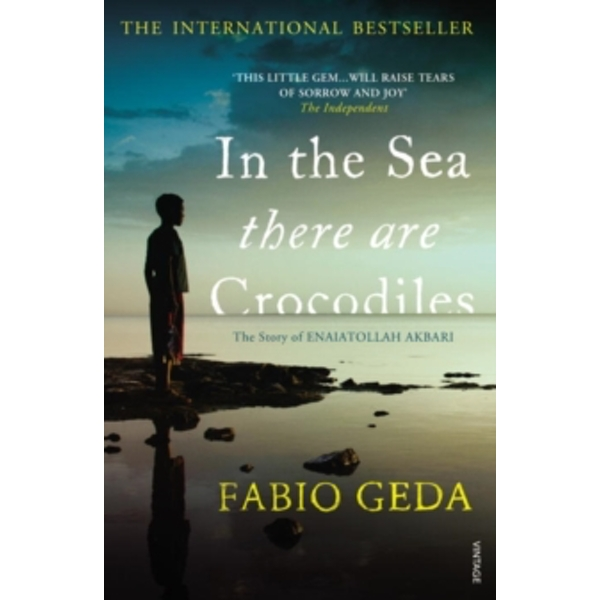 In the Sea There are Crocodiles by Fabio Geda (Paperback, 2012)