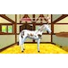 Bibi & Tina Adventures with Horses Nintendo Switch Game - Image 4