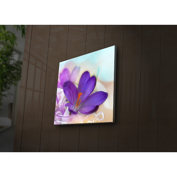 4040?ACT-38 Multicolor Decorative Led Lighted Canvas Painting