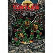 Teenage Mutant Ninja Turtles  The Ultimate Collection: Volume 1