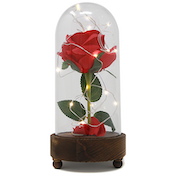 Enchanted Light Up Beauty and the Beast Rose Jar | M&W With Rose