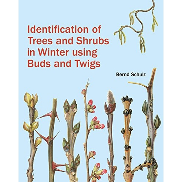 Identification of Trees and Shrubs in Winter Using Buds and Twigs  Hardback 2018