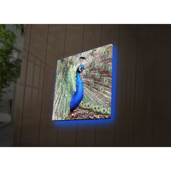 4040DACT-45 Multicolor Decorative Led Lighted Canvas Painting