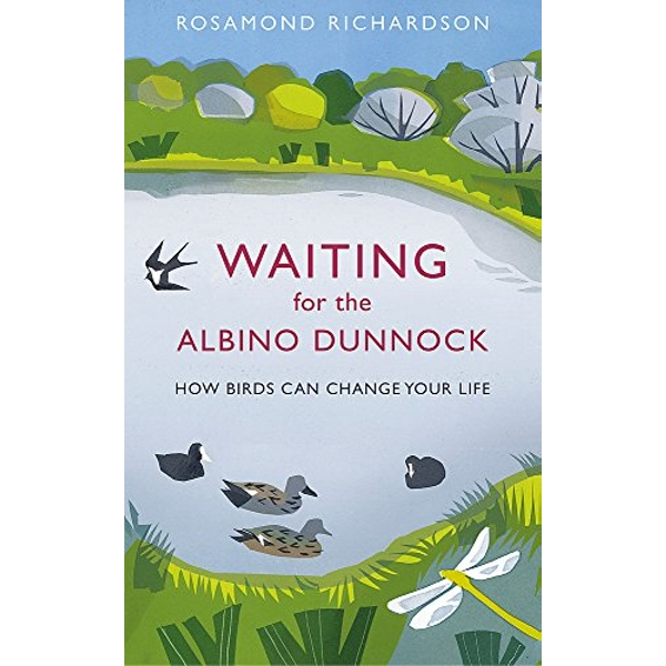 Waiting for the Albino Dunnock: How birds can change your life by Rosamond Richardson (Hardback, 2017)