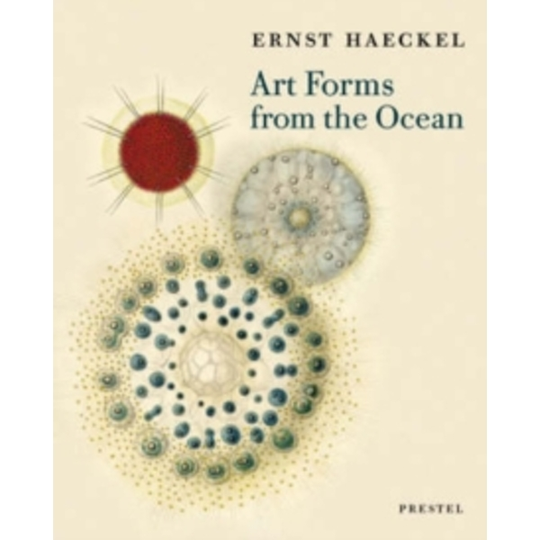 Art Forms from the Ocean: The Radiolarian Prints of Ernst Haeckel by Olaf Breidbach (Paperback, 2005)