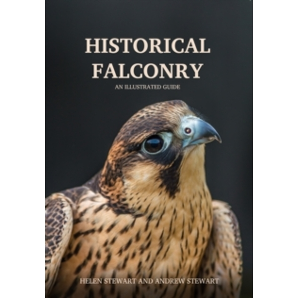 Historical Falconry : An Illustrated Guide
