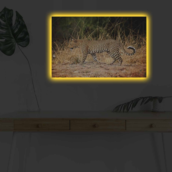 4570DHDACT-091 Multicolor Decorative Led Lighted Canvas Painting