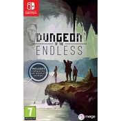 Dungeon of the Endless Nintendo Switch Game