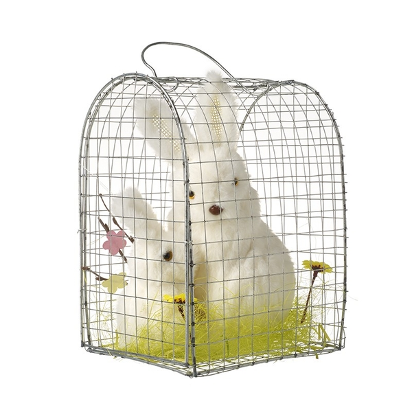 Two Rabbits In A Cage By Heaven Sends