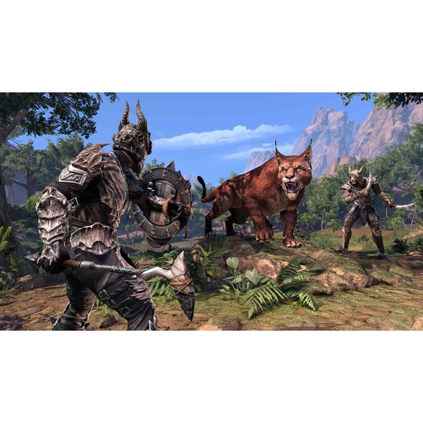 The Elder Scrolls Online Elsweyr PS4 Game