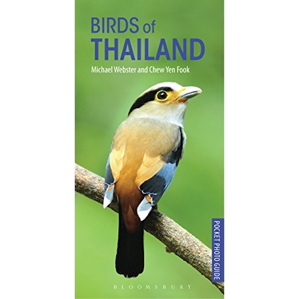 Birds of Thailand  Paperback / softback 2018