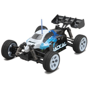 Jackal 1/18th Buggy EP (Ripmax) RC Car
