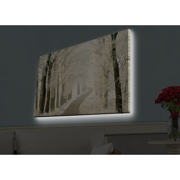 4570HDACT-057 Multicolor Decorative Led Lighted Canvas Painting