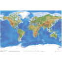 Planetary Visions Physical Map of the World Maxi Poster
