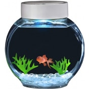 Fincredibles Electronic Fish and Glass Bowl