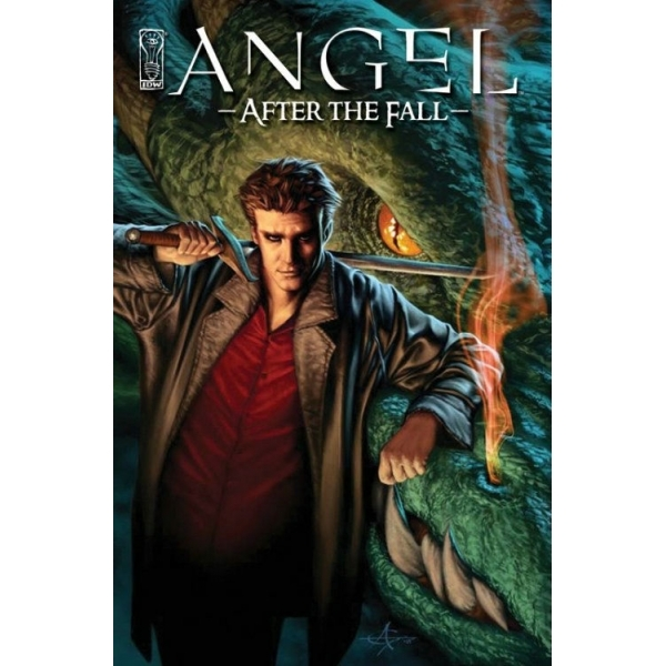 Angel: After The Fall Volume 1 HC