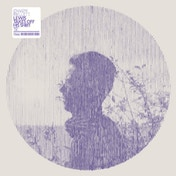 Owen Pallett - Lewis Takes Off His Shirt 12 Inch Single Vinyl