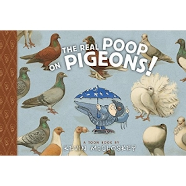 book report on pigeons at daybreak essay Explore the ways in which anita desai manages to write a beautiful and humorous story from an experience of sickness and lack of communication support your ideas with details from desai´s writing consider the following 1) descriptions of mr basu and his wife otima.