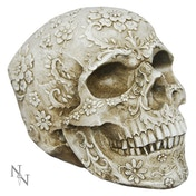 Floral Decay Skull