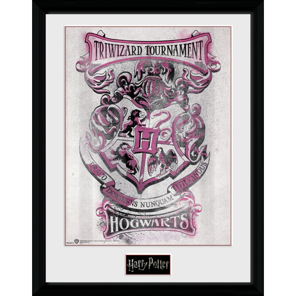 Harry Potter Triwizard Hogwarts Framed Collector Print