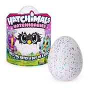 Hatchimals Hatchibabies Purple and Teal