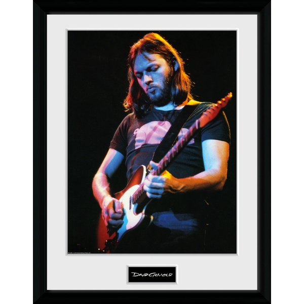 David Gilmour - Live Photo Collector Print