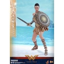 Wonder Woman - Training Armour Version 1:6 Hot Toys Figure